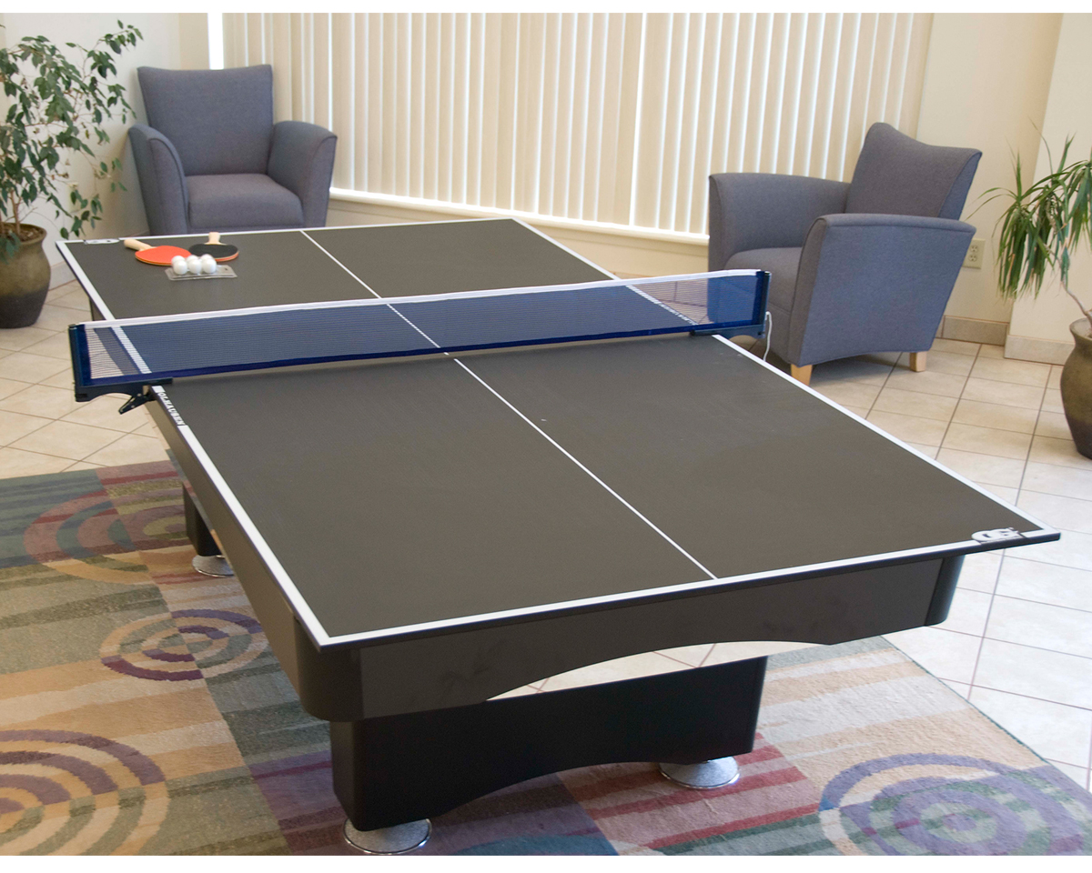 Ping Pong Conversion Top Game Room